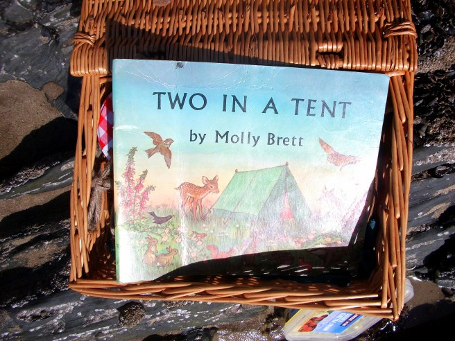 book & picnic